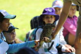 Year 6 Outdoor Education 3