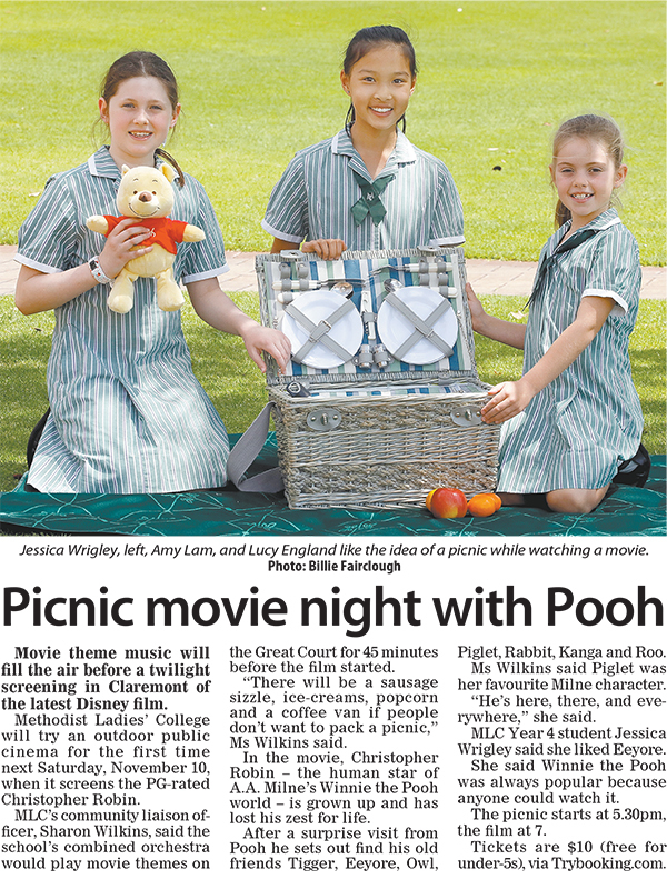 Picnic movie night with pooh